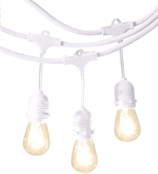 Where to find Light String 15 Bulb 48  White in Naples